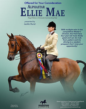 COTTONWOOD_Ellie-Mae_DECEMBER_2020.jpg