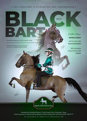 Promotion_Majestic Oaks_HCH Black Bart (