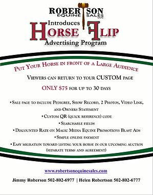 Horse Flip Advertising
