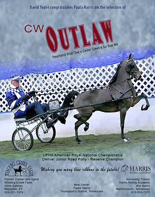 Winding Creek_Yoder_Outlaw_Jan_2021 (2).