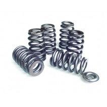 PSI Beehive valve springs
