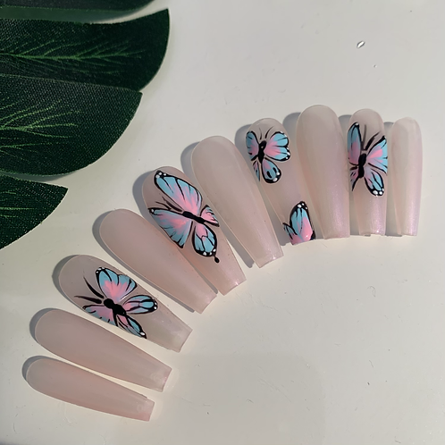 Hand painted blue/pink butterfly