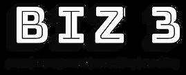 Biz 3 2019 Logo.png