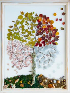 Cherry Blossom Four Seasons
