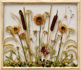 Sunflower Power Too