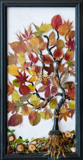 Autumn-Breeze-JPEG-2.jpg