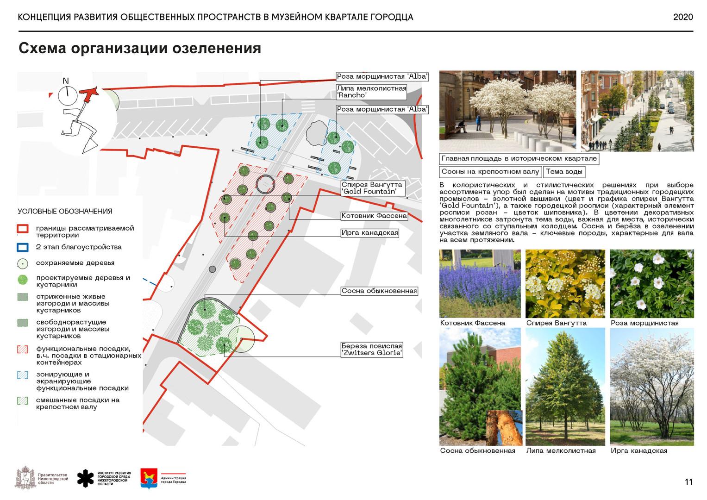 Площадь Кольцова колодца. Схема озеленен