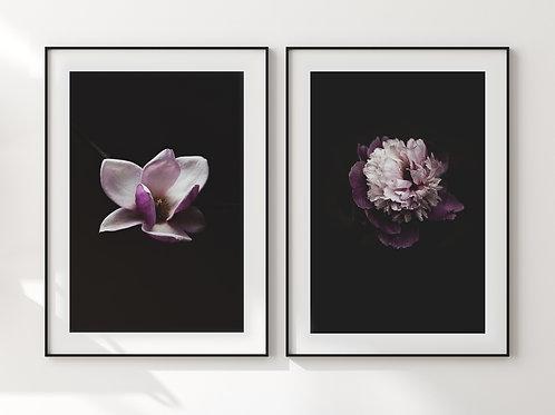 Magnolia&Peony Set