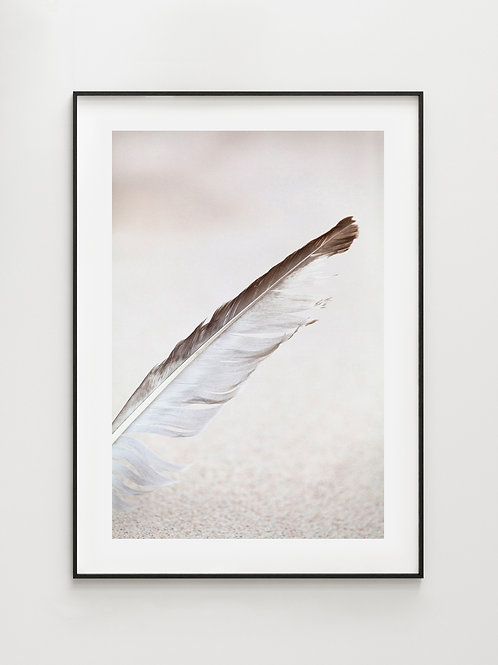 FEATHER By the Sea - plakat