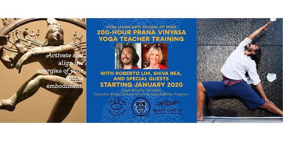 200-Hour Prana Vinyasa Teacher Training