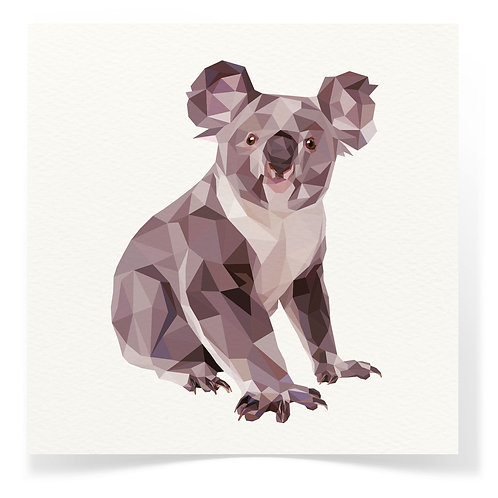 Koala Greeting Cards 3pack