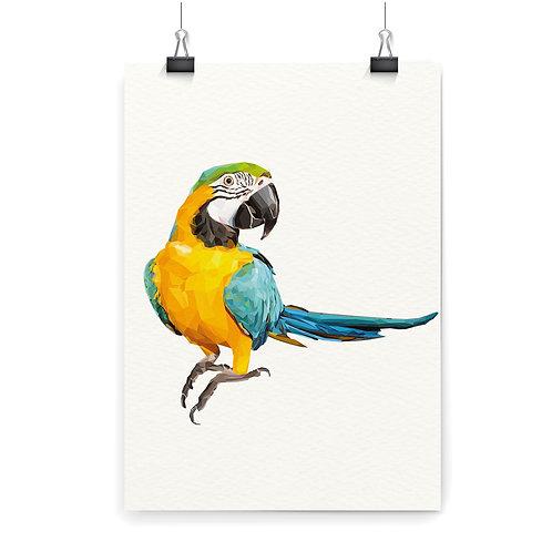 Macaw Parrot Wall Art Print