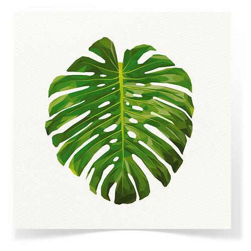 Monstera Leaf Greeting Cards 3pack