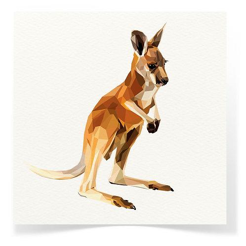 Kangaroo Greeting Cards 3pack
