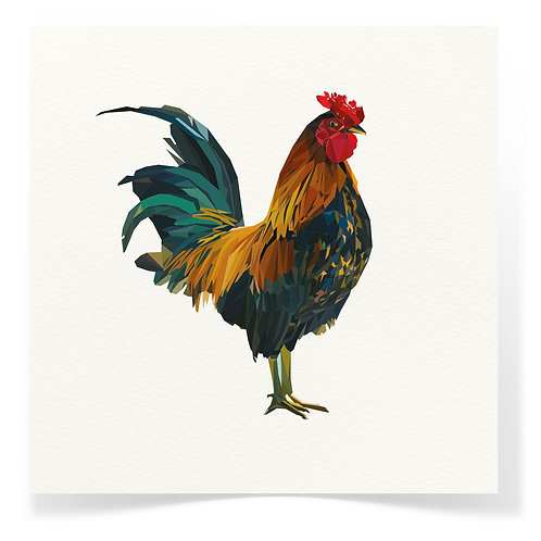 Rooster Greeting Cards 3pack