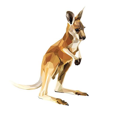 Kangaroo Digital Download