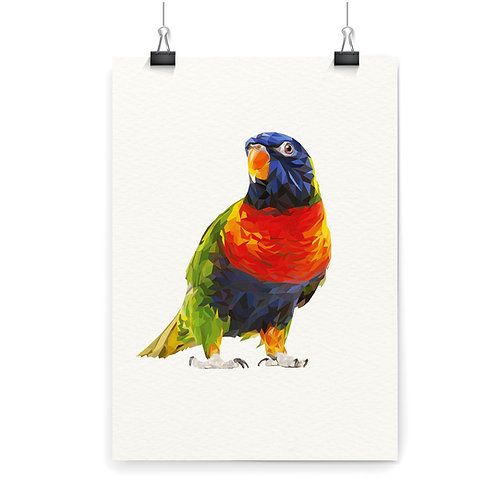 Lorikeet 2 Wall Art Print