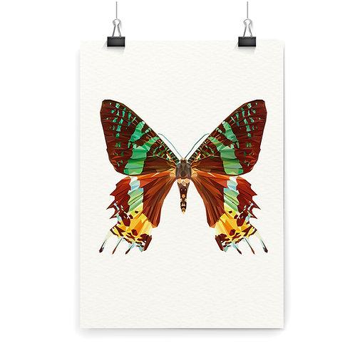 Butterfly 2 Wall Art Print