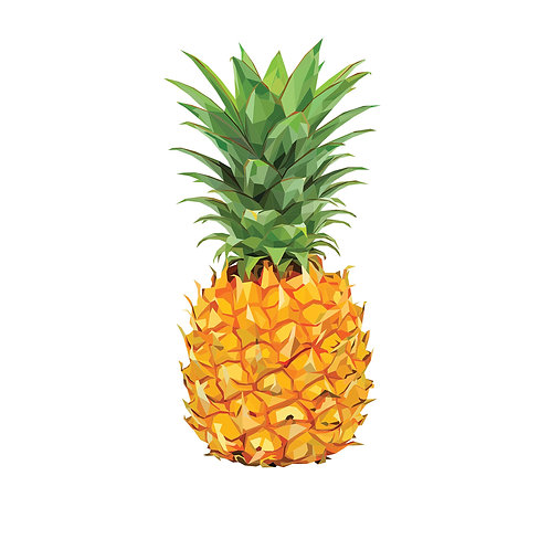 Pineapple Digital Download