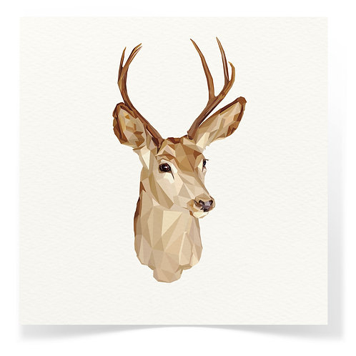 Deer Greeting Cards 3pack
