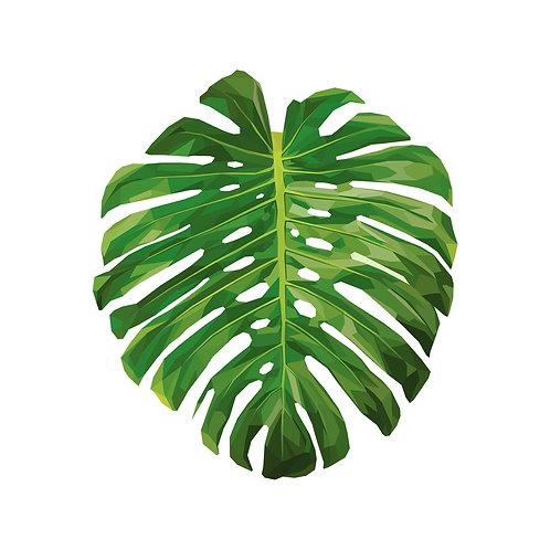Monstera Leaf Digital Download
