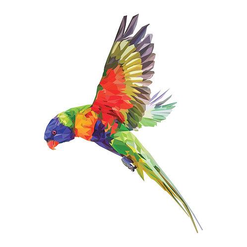 Flying Lorikeet Digital Download