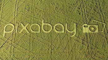 pixabay-592256.jpg