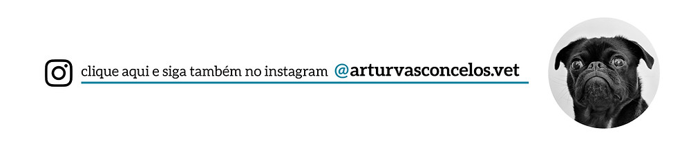 instagram do veterinário artur vasconcelos