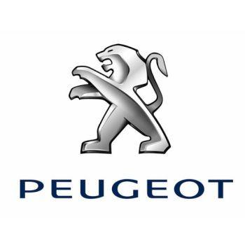 Peugeot-Carre.jpg