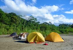 Aventura Amazónica