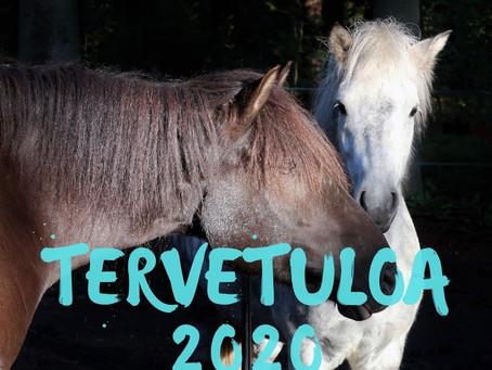 Lempeää Uutta Vuotta 2020
