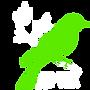 лого6.png