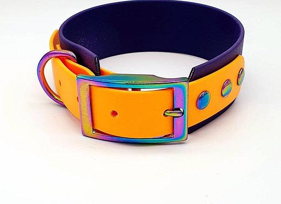 Biothane® two-tone Sighthound Collar