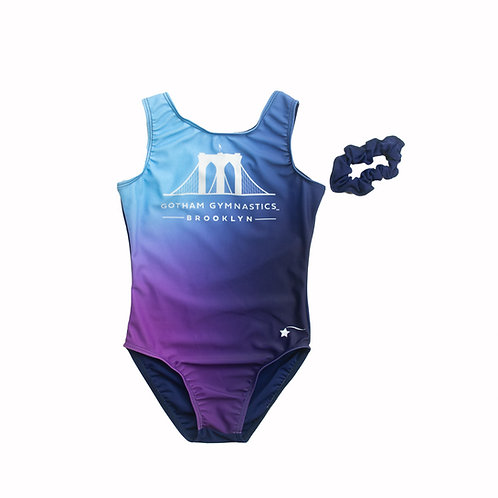 Ombre Leotard-Adult Size