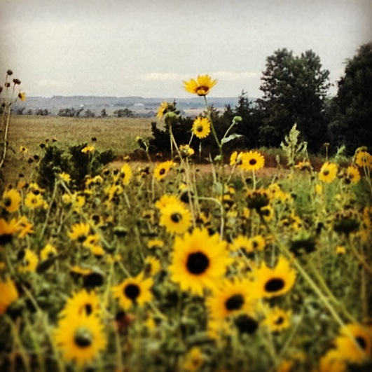 Over Nebraska Plains