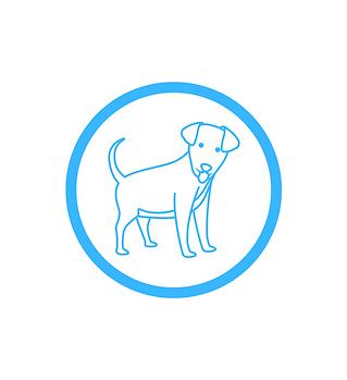 Animals & CBD (dog)
