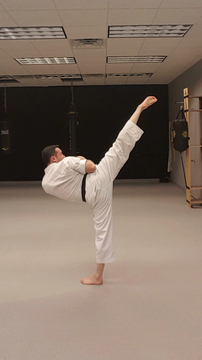 Brown's School of Martial Arts North Lib