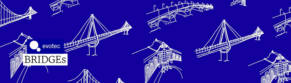 BRIDGEs - Evotec_banner.png