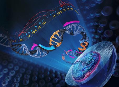 Enabling functional genomics studies in individual cells