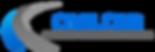 Logo Website-1_clipped_rev_1.png