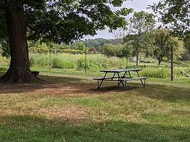 park photo 2.jpg