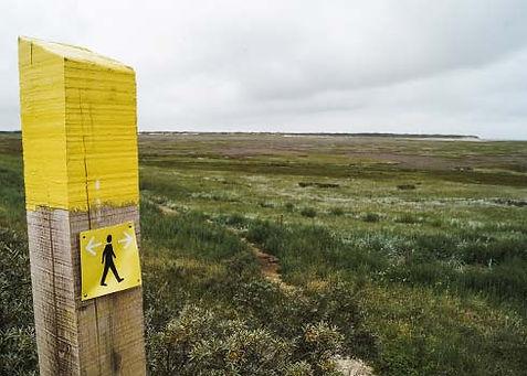 De mooiste wandelroute in natuurgebied De Slufter op Texel