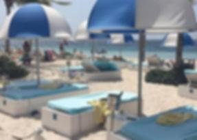 Zest in Curacao