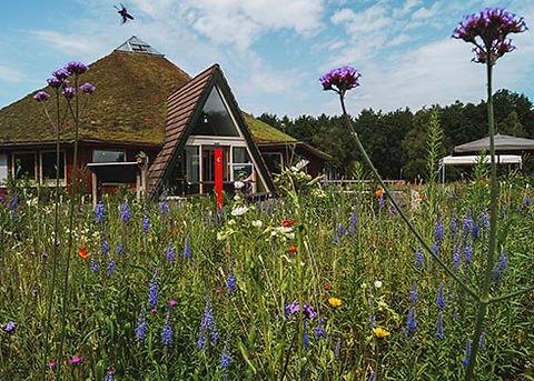 Bezoekerscentrum nationaal park Dwingelderveld