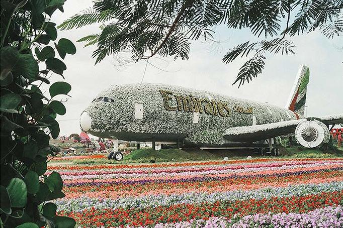 Bezoek de Dubai Miracle Garden
