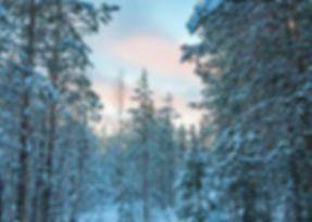 Winterse reis naar lapland: wat mag niet ontbreken in je koffer?