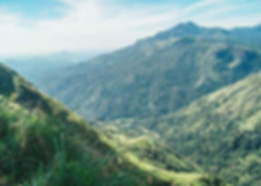 Uitzicht hiken bij Ella in Sri Lanka