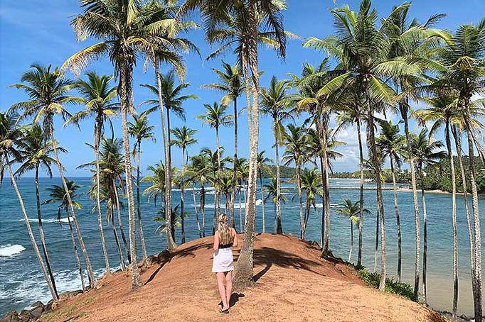 Tips voor een 18-daagse veelzijdige rondreis door Sri Lanka