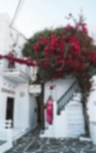 Bezoek de chora in Mykonos!