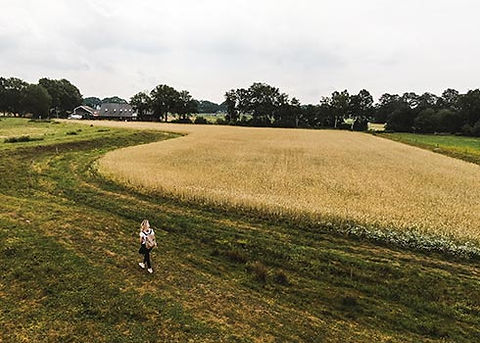 Ontdek Drenthe tijdens de mooiste wandeltochten door de nationale parken